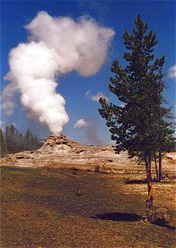 Geyser im Yellowstone National Park